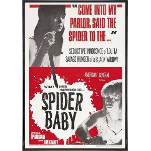 Spider_Baby080618PF_0fa69210-ad9b-4f3b-a18a-c72958350bc9_1024x1024